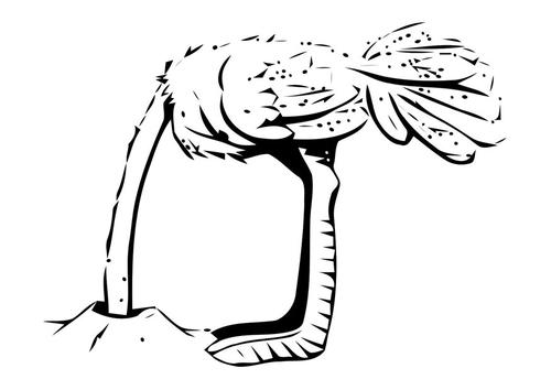 Coloriage autruche avec la tête dans le sable