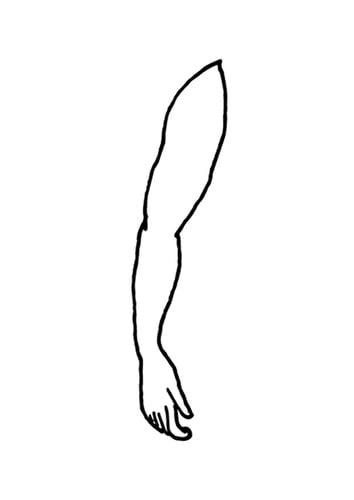 اجزاء جسم الإنسان باللغات الثلاثة. bras-t9520.jpg
