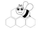 Coloriage abeille - devant