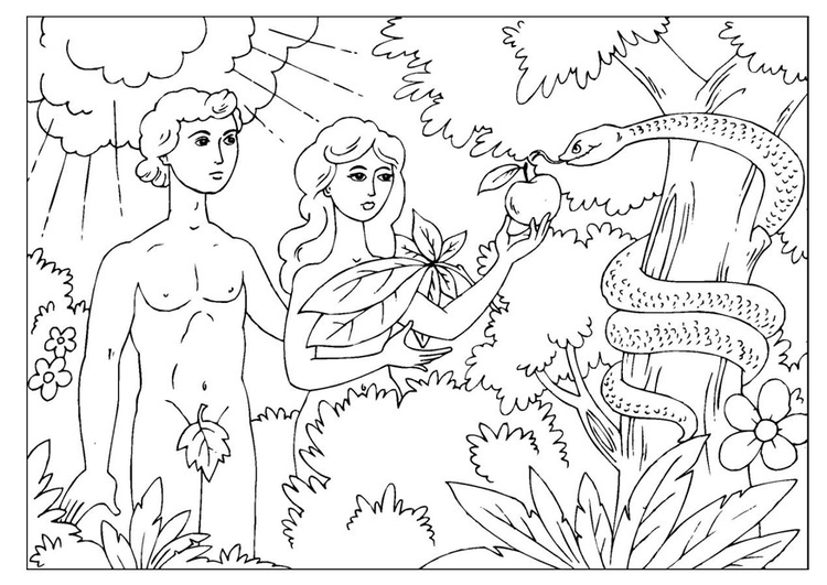 Coloriage Adal Et Eve Img 25966