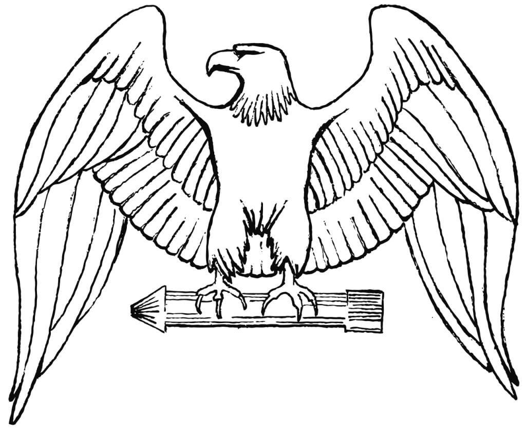 Coloriage aigle img 16018 - Dessin d aigle royal ...