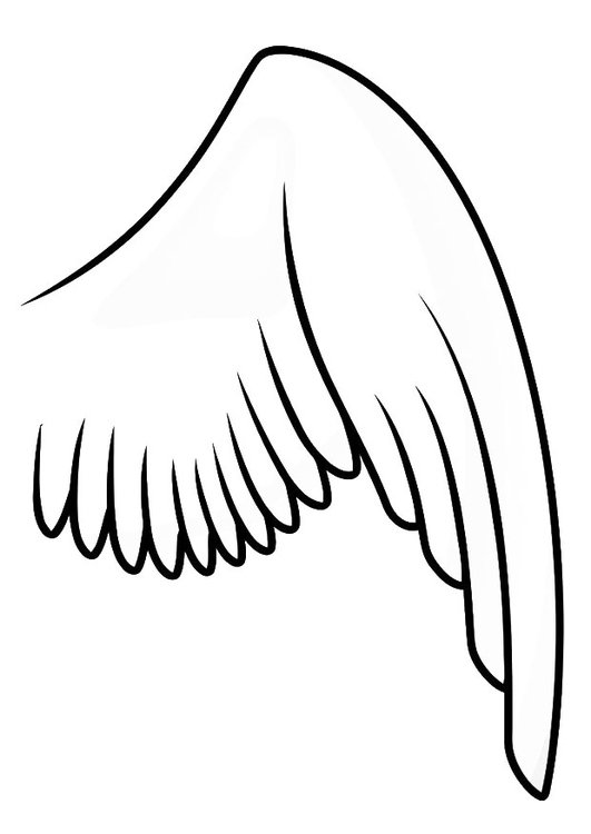 coloriage aile droite img 20697 peasant clipart pheasants clipart black and white