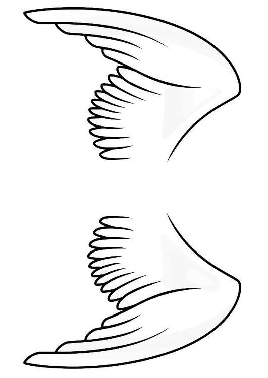 Coloriage ailes img 20666 - Aile de dragon dessin ...