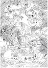 Coloriage animaux dans la jungle