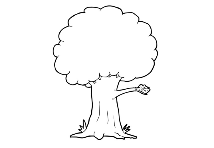 Photo Coloriage Arbre.Coloriage Arbre Img 13741