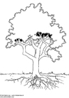 Coloriages arbre