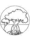 Coloriage arbres de mangrove