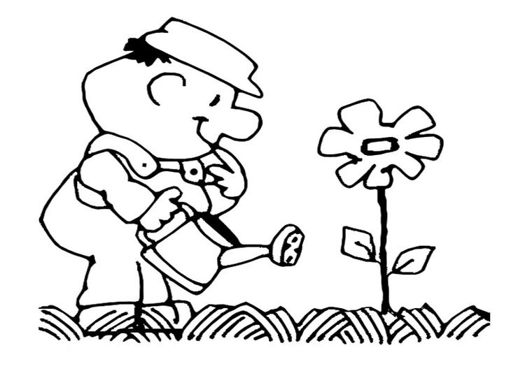 Coloriage arroser les fleurs img 22154 - Les fleurs coloriage ...