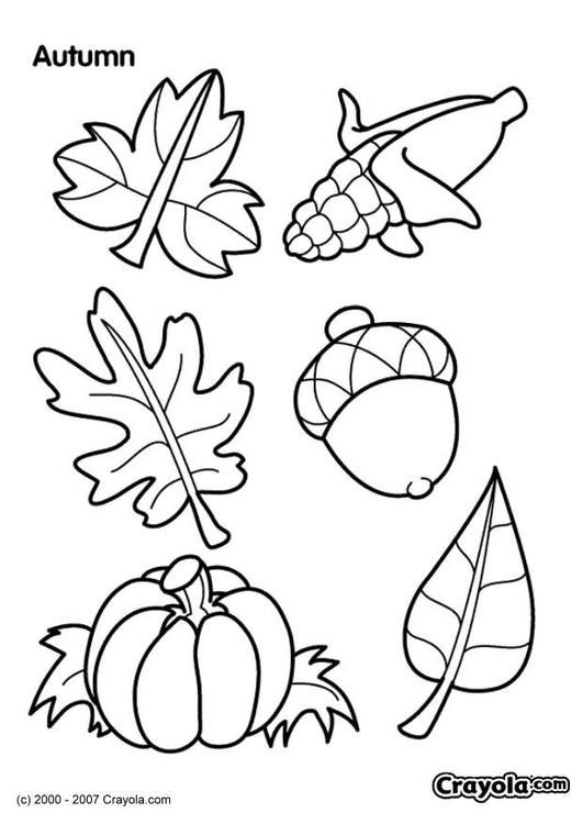Coloriage Automne Img 7830