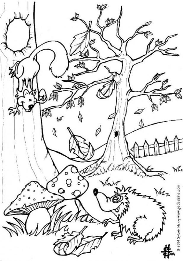 Coloriage automne cureuil et h risson img 6444 - Coloriage paysage automne ...