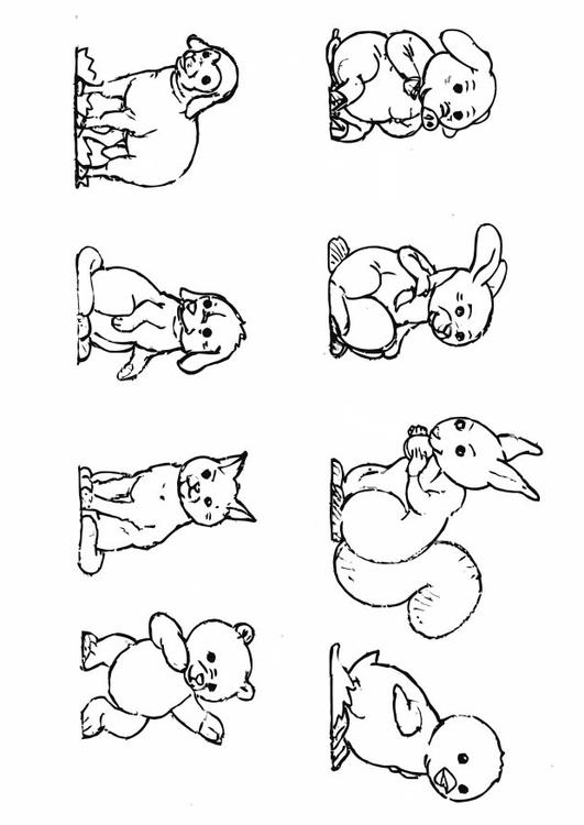 Coloriage Bebe Animau.Coloriage Bebe Animaux Img 10923 Images