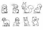 Coloriages bébé animaux