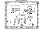 Coloriage bétail