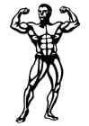 Coloriages body building