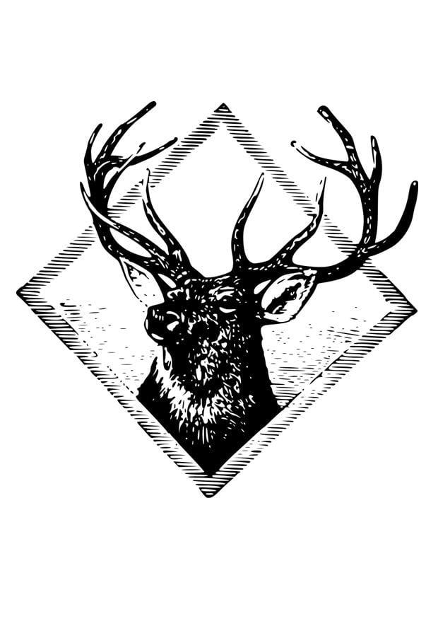 Coloriage bois de cerf  img 29529 ~ Dessin Bois De Cerf