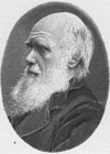 Coloriages Charles Darwin