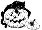 Coloriage chat noir sur citrouille