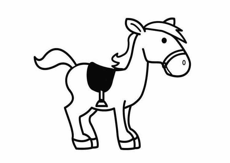 Paarden Kleurplaat Amerigo Coloriage Cheval De Saint Nicolas Coloriages Gratuits 224
