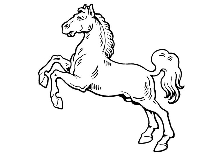 Coloriage Cheval Img 19310