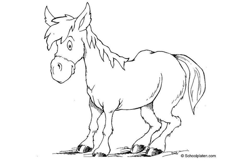 Coloriage cheval