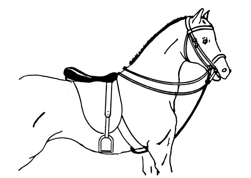 Kleurplaten Paarden Dressuur Coloriage Cheval Sell 233 Img 18896