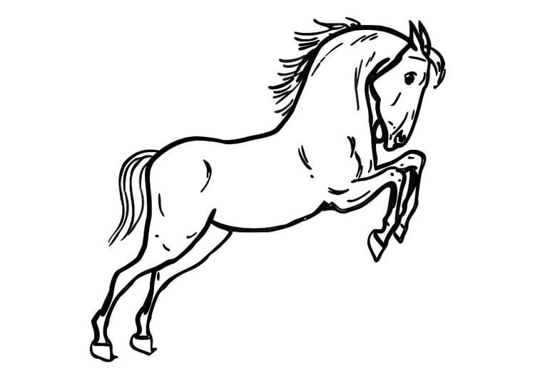 Paard Met Zadel En Hoofdstel Kleurplaat Coloriage Cheval Sotant Img 10362