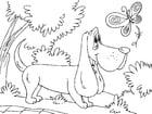 Coloriage chien de chasse