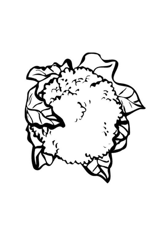 Coloriage Chou Fleur Img 9558