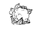 Coloriage chou-fleur