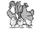 Coloriage Coq, poule et poussins