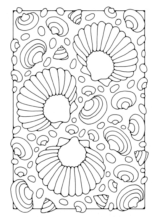 Coloriage coquillages - img 21910