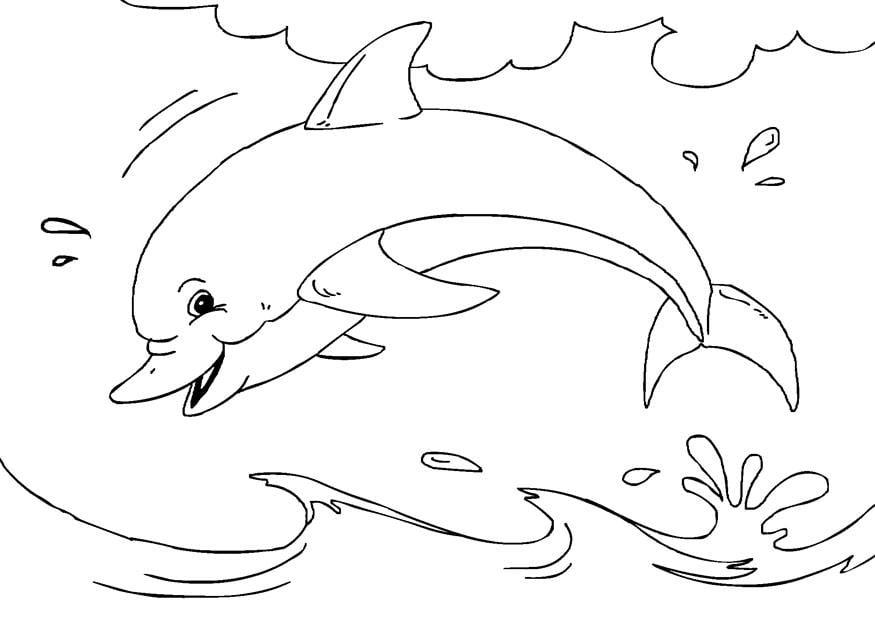 Dibujo Delfin Para Colorear E Imprimir: Coloriage Dauphin