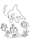 Coloriage dauphin et poisson avec ancre