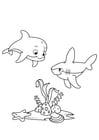 Coloriage dauphin et requin