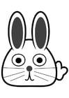 Coloriage devant du lapin