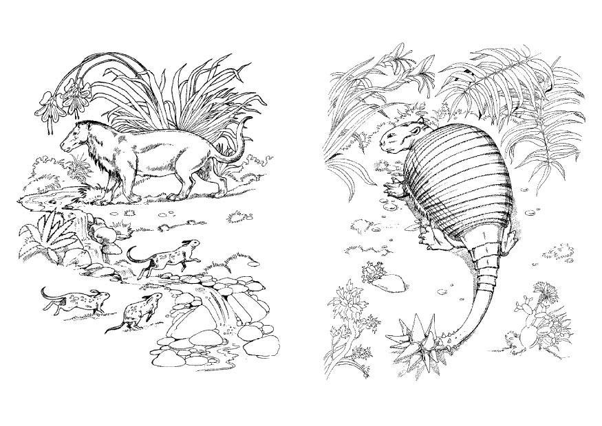 Coloriage Dino Et Herbivore Img 9099