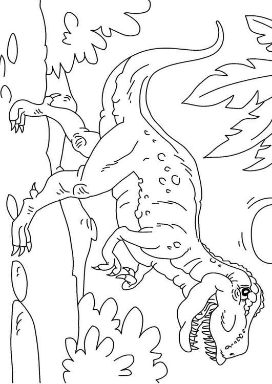 Coloriage dinosaure tyrannosaurus rex img 27625 - Coloriage dinosaure tyrex ...
