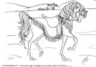Coloriage dressage