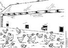 Coloriage élevage en plein air