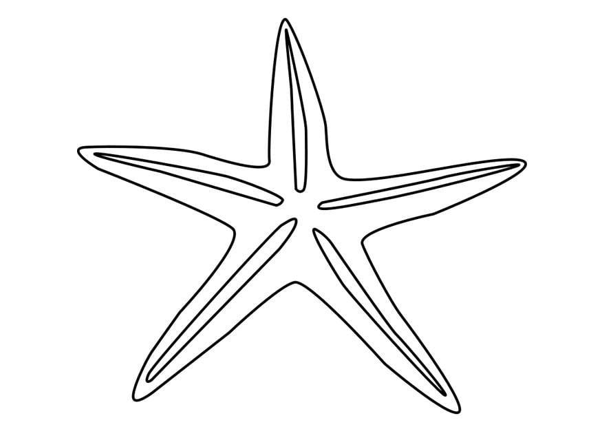 Coloriage étoile De Mer Img 27185