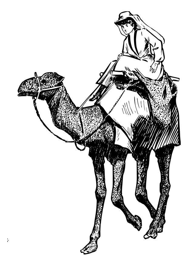 Kleurplaat Middeleeuwen Coloriage Femme Sur Chameau Img 28068 Images