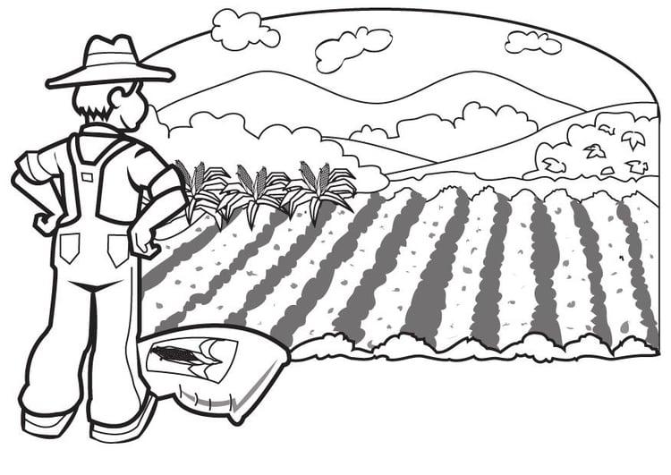Coloriage fermier img 7076 - Coloriage fermier ...