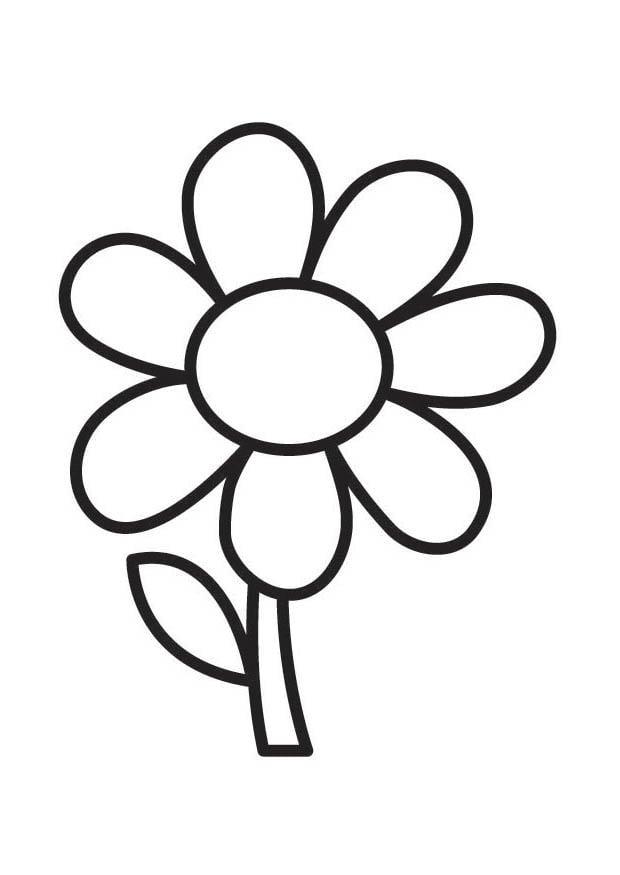 Coloriage fleur img 18352 - Comment dessiner une fleur facilement ...