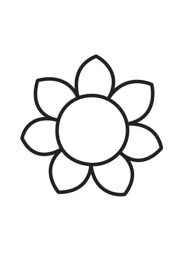 Coloriage fleur img 18356 images - Coloriage fleur 8 petales ...