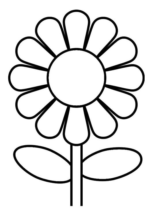 Coloriage fleur img 19246 - Coloriage de fleur ...