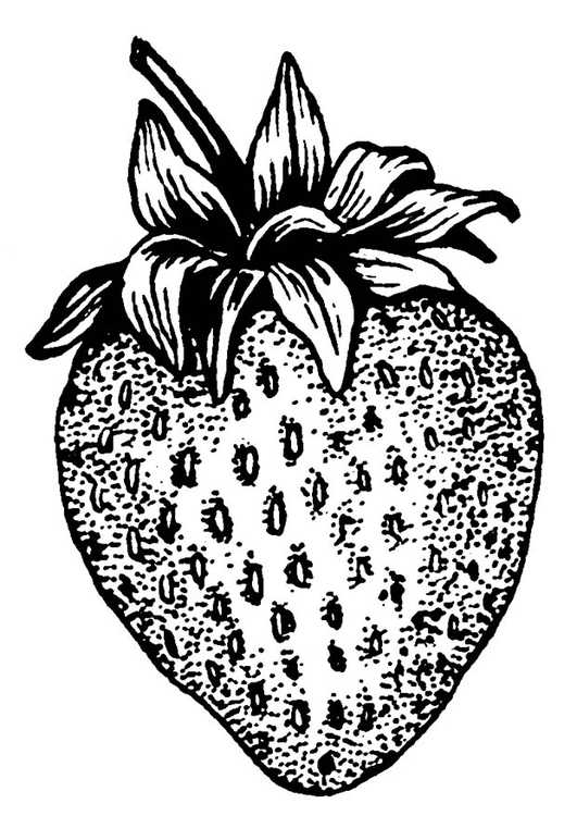 Coloriage Fraise Img 18766 Images
