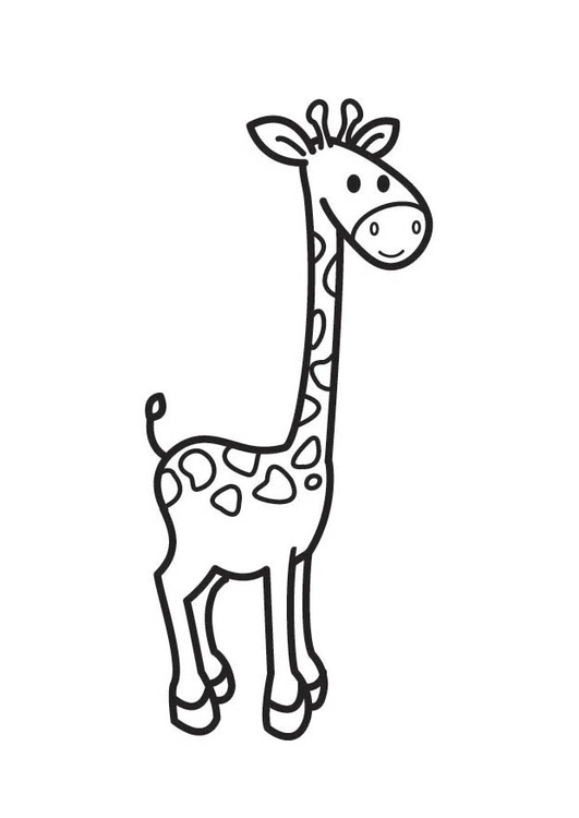 Coloriage Girafe Maternelle.Coloriage Girafe Img 17944