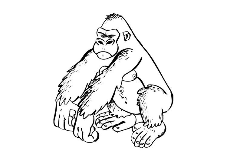 Coloriage Gorille Coloriages Gratuits A Imprimer Dessin 9682