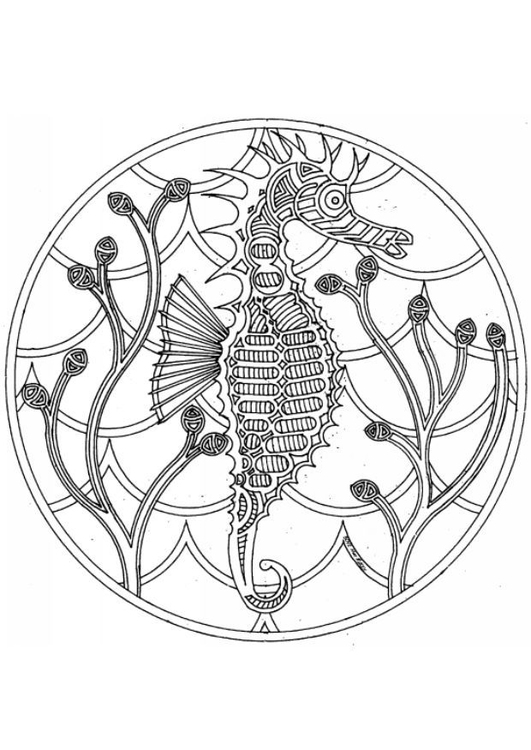 Coloriage Hippocampe Licorne.Coloriage Hippocampe Img 4544 Images