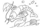 Coloriage homard
